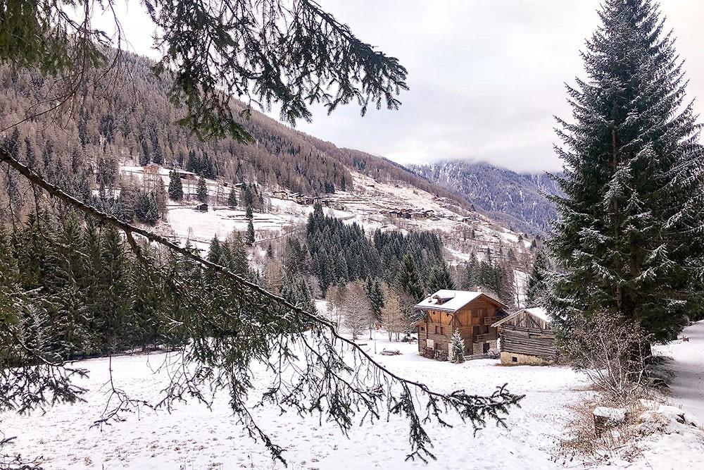 Val di Sole, Trentino