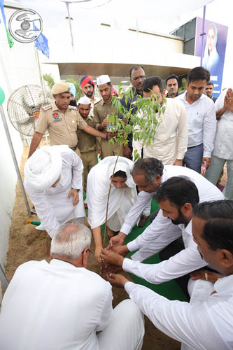 Satguru Mata Ji planted a tree