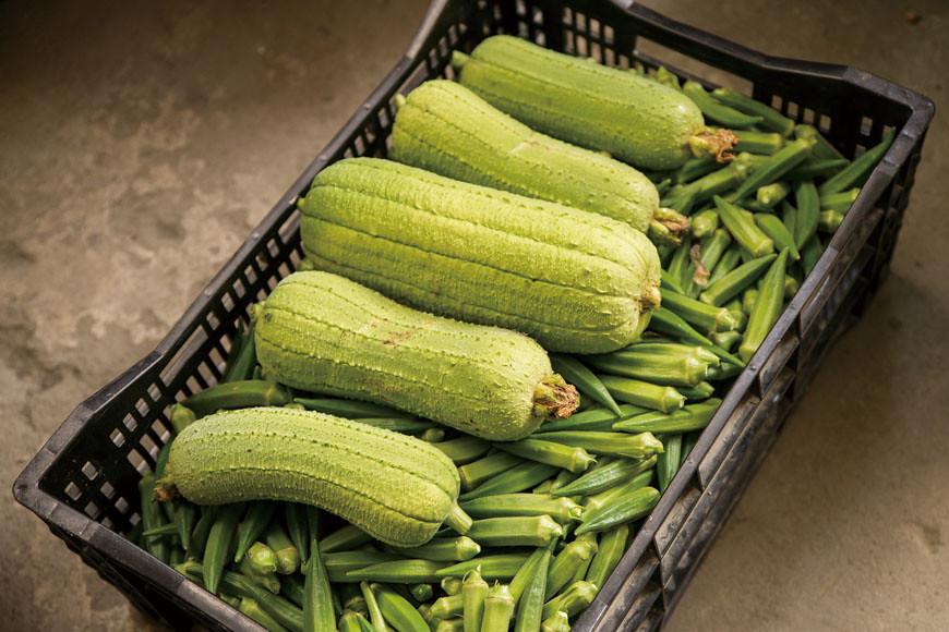 夏天當季蔬果:絲瓜與秋葵。