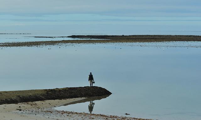 En attendant la marée basse