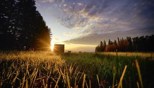 sturgeon county voigtlander sony instagram vanveenjf sun shine farming landscape stalbert alberta canada kanada ilce7m2