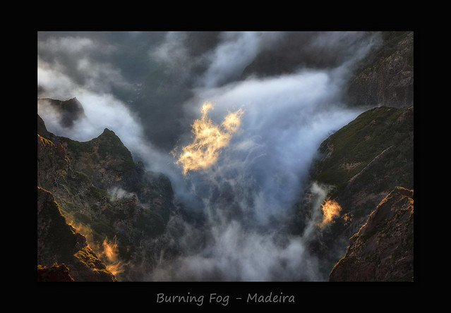 Burning Fog