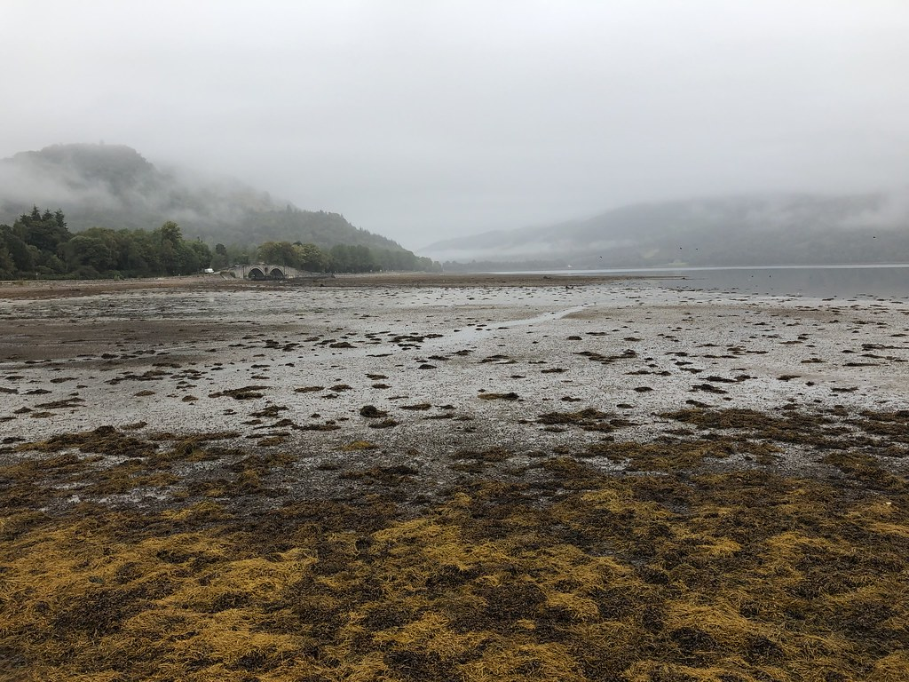 Loch Fyne from Inveraray on a drizzly morning