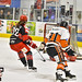 Hexagon National Telford Tigers v Swindon Wildcats