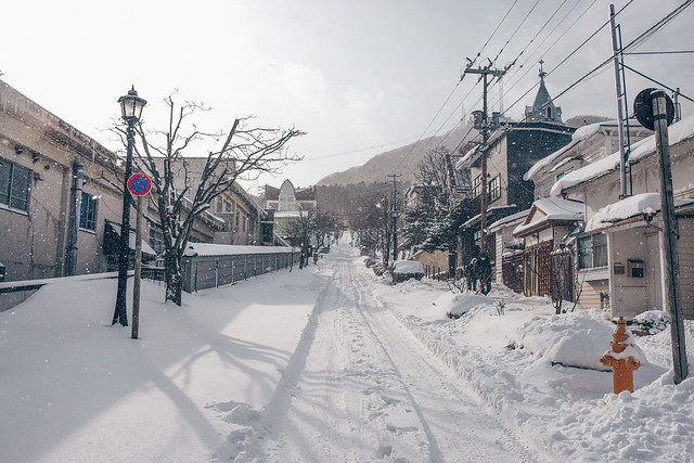 Snowy Hakodate