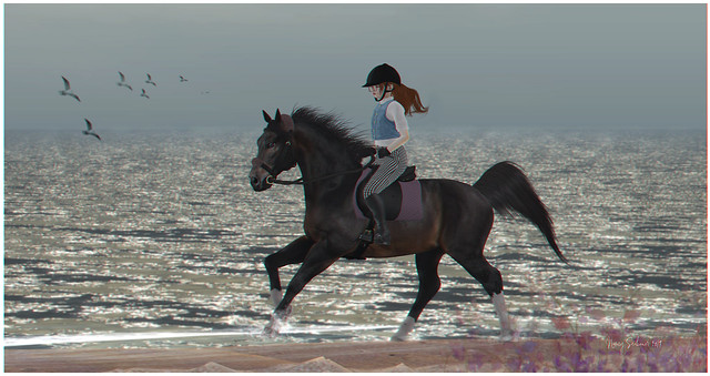 Elysian Pony