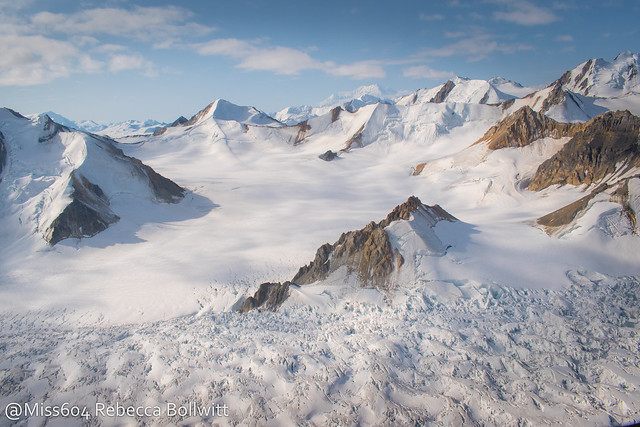 Icefield Discovery Tour