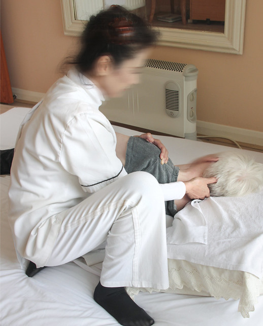 Nippon Shiatsu Clinic
