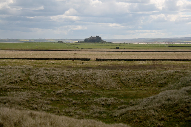 View over Holy Island
