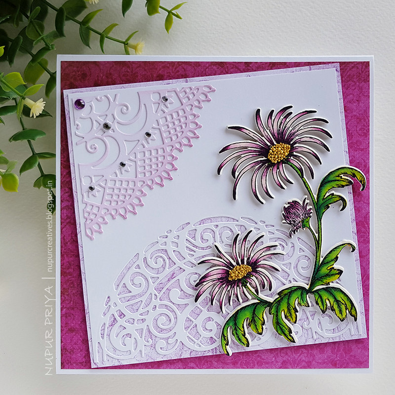 Purple Wild Aster Card_Nupur Priya_02