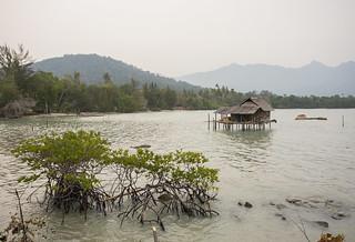 _Z2A5041 Tanjung Cengkih, Pulau Lingga