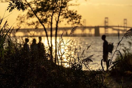 bokeh maryland bridge sunset chesapeakebay silhouette