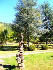 original cet arbre à Chats :-)