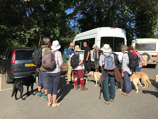 Meeting up with a group of visually impaired walkers and their guide dogs.