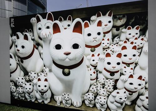 Welcome cats , Seoul, South Korea-46