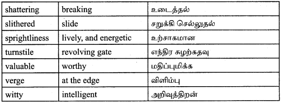 Tamilnadu Board Class 9 English Solutions Prose Chapter 2 I Cant Climb Trees Anymore - 11