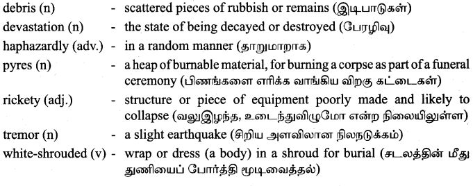 Tamilnadu Board Class 9 English Solutions Supplementary Chapter 3 Earthquake - 3