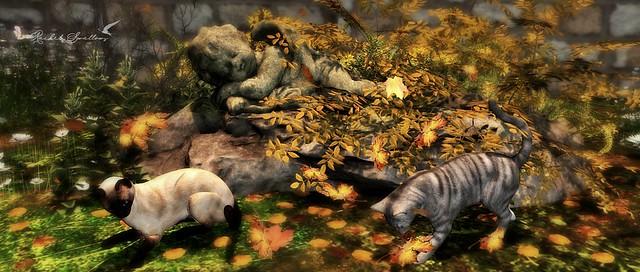Chasing Falling Leaves