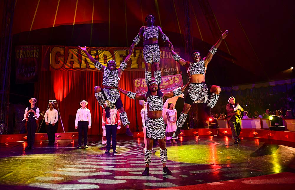 A Visit To A Circus Show Essay