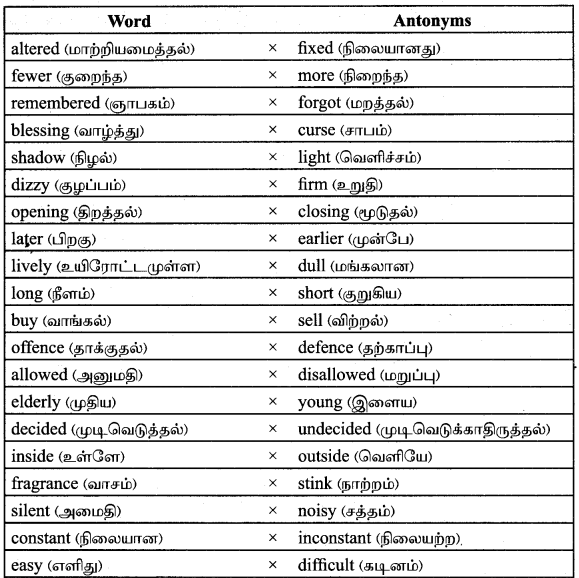 Tamilnadu Board Class 9 English Solutions Prose Chapter 2 I Cant Climb Trees Anymore - 12