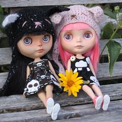 Rosa & Nele