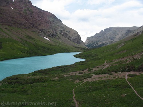 Trails near Cracker Lake, Glacier National Park, Montana