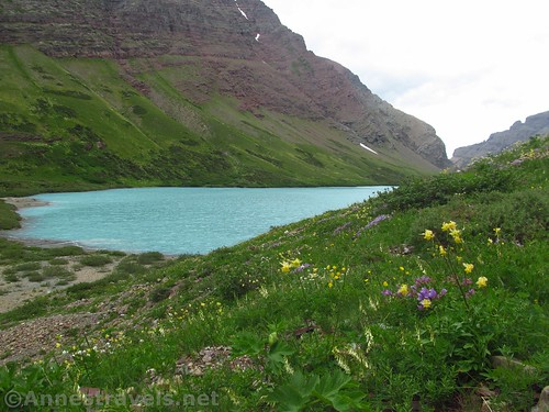 At the head of Cracker Lake, Glacier National Park, Montana