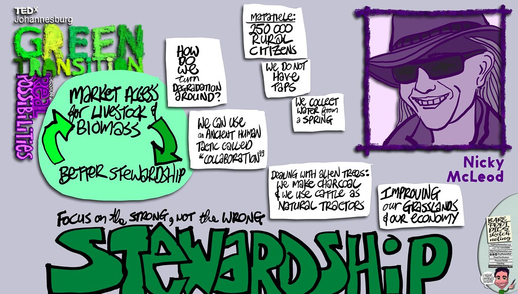 #TEDxJohannesburg #GreenTransitions #Sketchnotes Session 2 — 05 Nicky McLeod