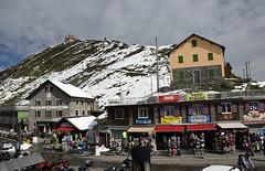 Col du Stelvio (i)