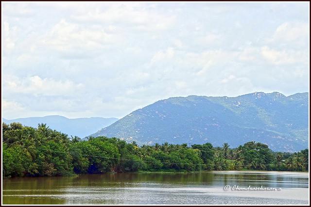 9194 - River Cauvery at Koneripatti