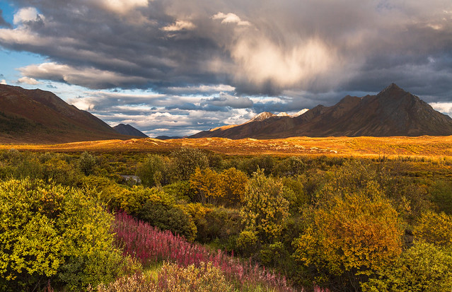 Changing Seasons in the Ogilvie Mountains