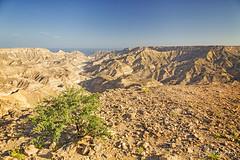Oman, canyon dans le Dhofar