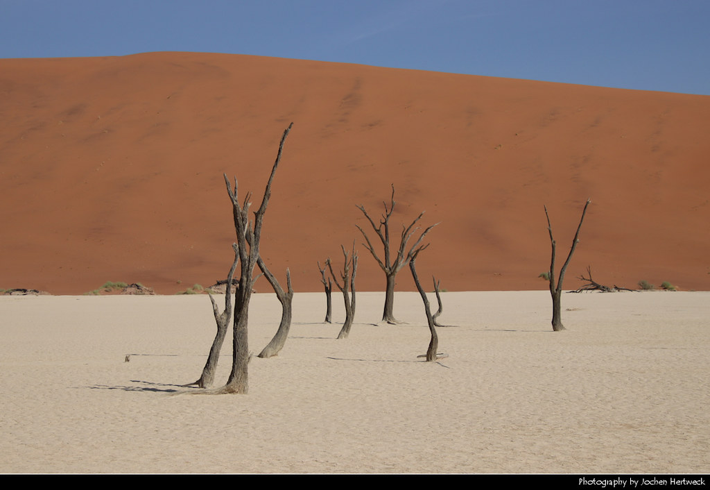 Deadvlei, Namib-Naukluft NP, Namibia