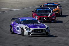 Rolex 24 at Daytona, Jan  2019