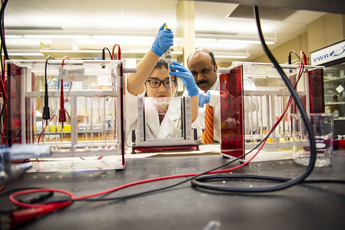 Yuxian Zhang and Ramesh Jeganathan work in the lab.