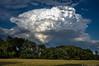 Cumulonimbus! by Bill Bowman