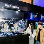 중국 베이징에서 열린 OLED 빅뱅 미디어 데이 행사에서 참석자들이 LG디스플레이의 55인치 투명 OLED 디스플레이를 관람하고 있다.