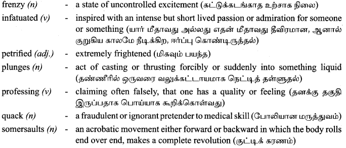 Tamilnadu Board Class 9 English Solutions Supplementary Chapter 4 The Cat and the Pain-killer - 7
