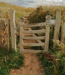 Gateway to Heven. Taken with phone.