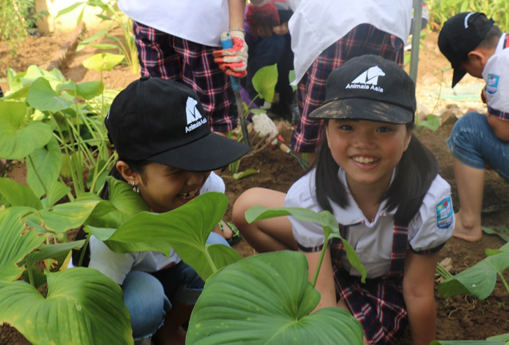 Students plant herbs in the garden