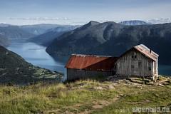 Svarthiller - Molden