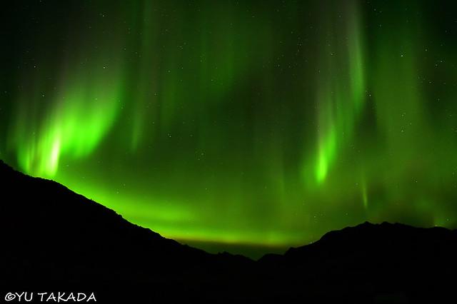 Northern Lights at Denali National Park
