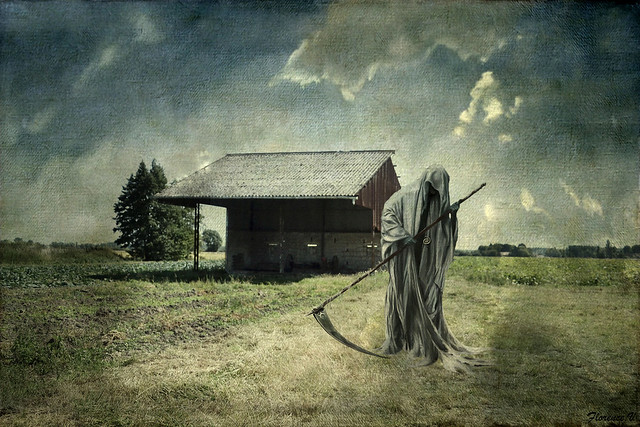 L'herbe de la Mort, Geotenn ar marv