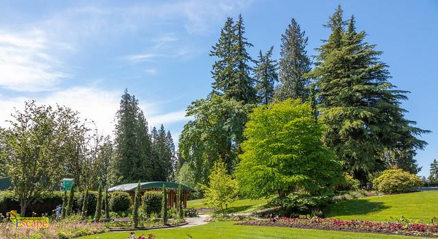 Stanley Park, Vancouver, B.C. Canada.