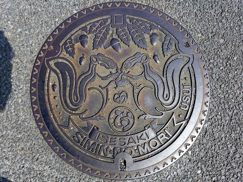 Isesaki Gunma, manhole cover (群馬県伊勢崎市のマンホール)