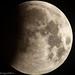 wolf moon 9pm-8.jpg