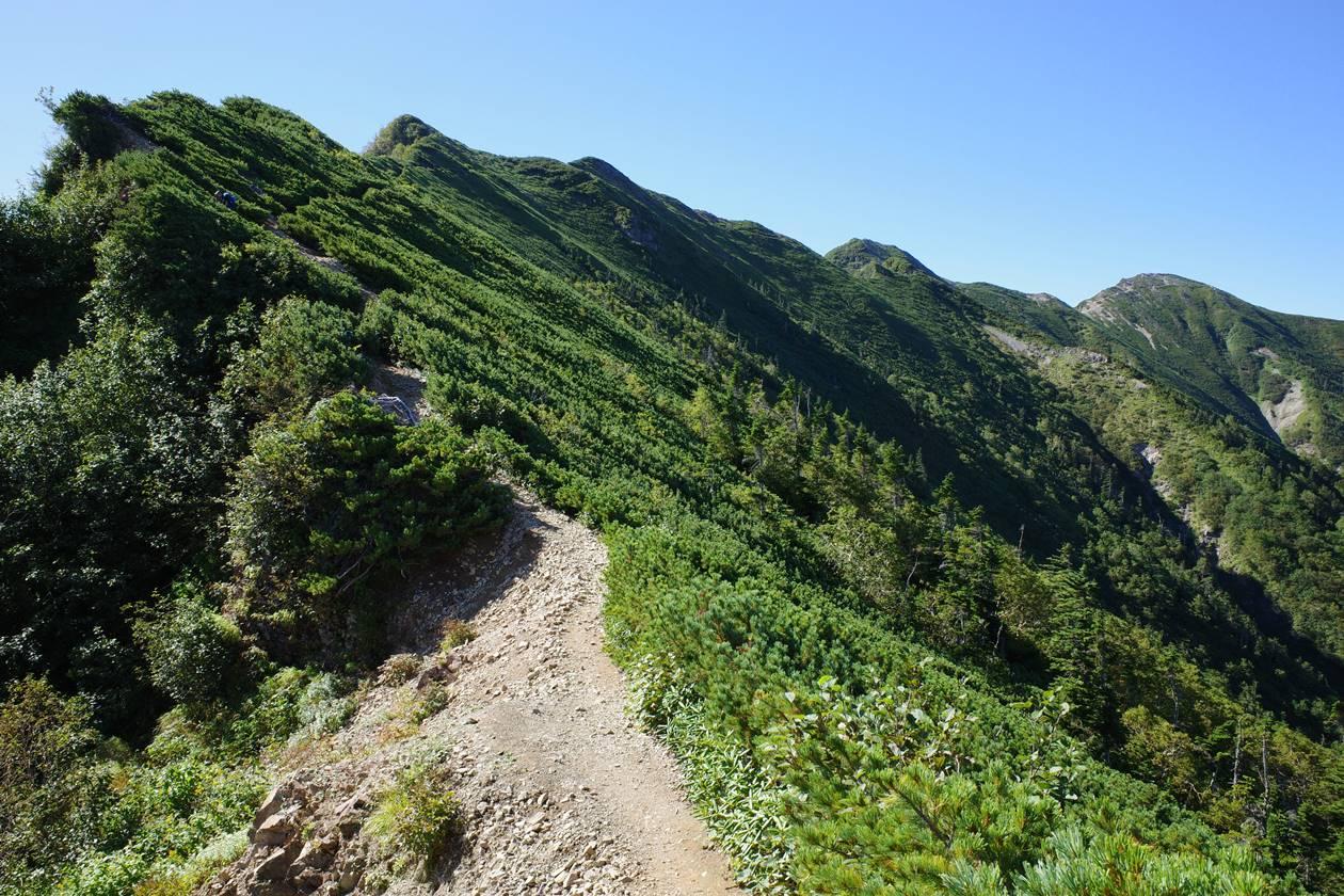 冷池山荘から爺ヶ岳までの登り坂
