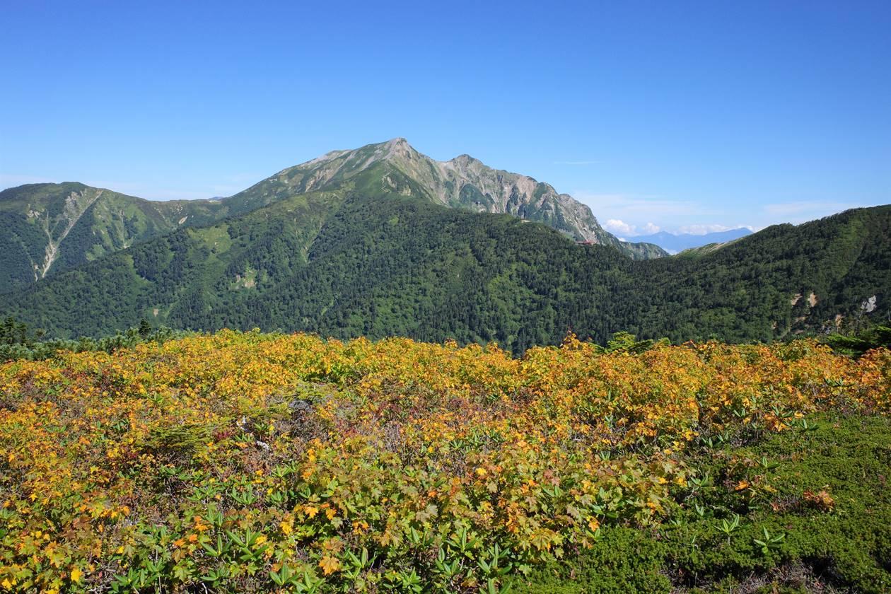 紅葉と鹿島槍ヶ岳