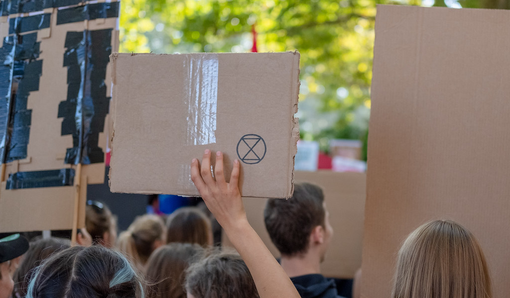 Photo of the reverse of cardboard placards, one with a small Extinction Rebellion logo drawn on it