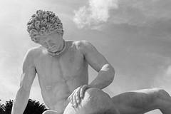 Gladiateur mourant Ludovisi (1672)